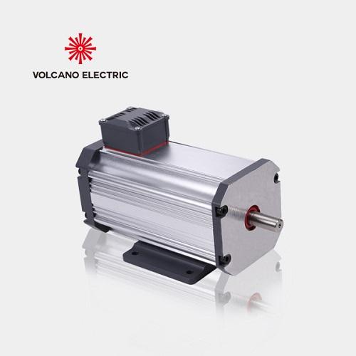 低压永磁同步电机(24V-48V-110V)